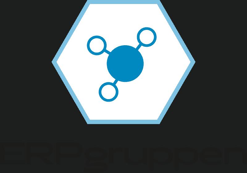 ERPgruppen logo vert sort bla╠e
